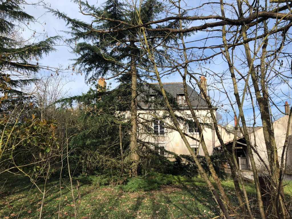 Maison à vendre 6 302m2 à Suèvres vignette-2