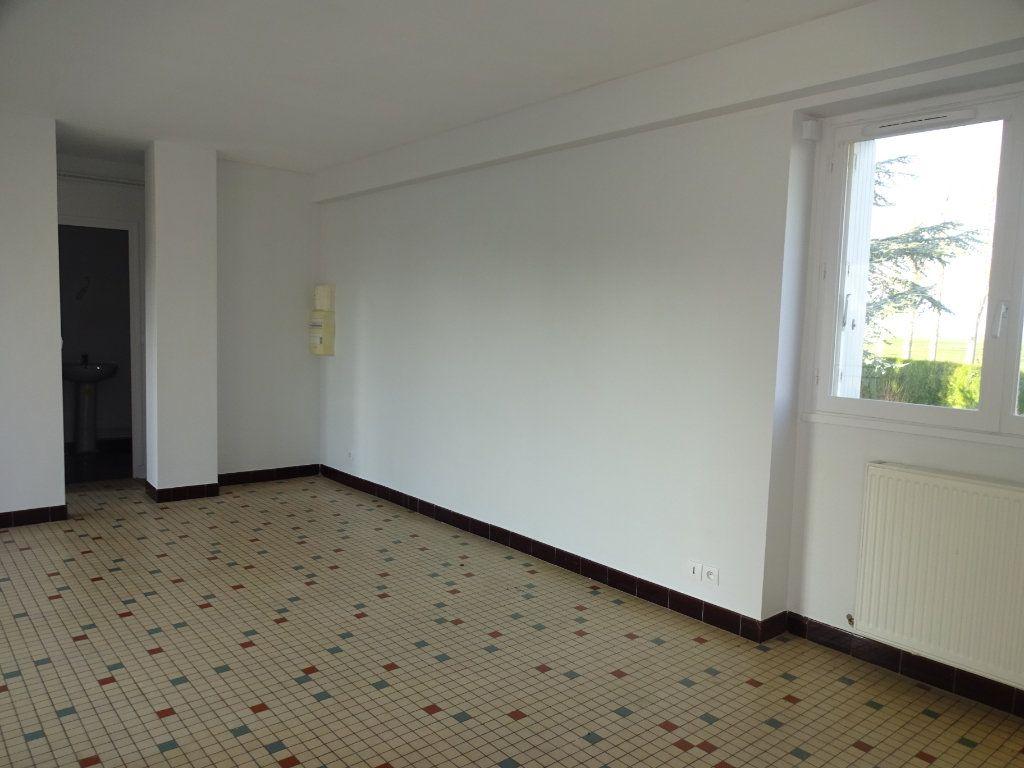 Appartement à louer 2 48m2 à Sannerville vignette-5