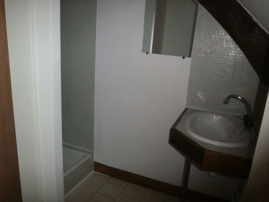 Appartement à louer 1 20.49m2 à Tours vignette-5