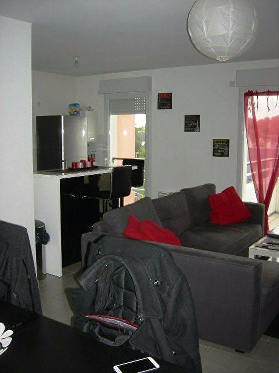 Appartement à louer 2 53.91m2 à Saint-Avertin vignette-5
