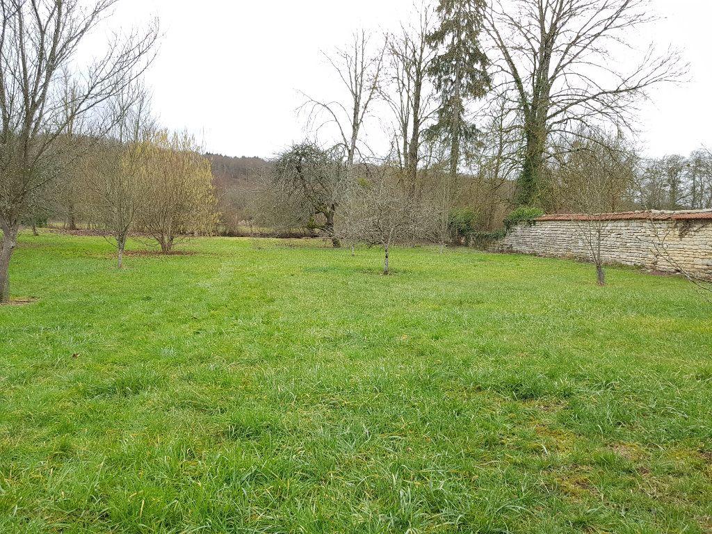 Maison à vendre 6 155.14m2 à Aubepierre-sur-Aube vignette-7