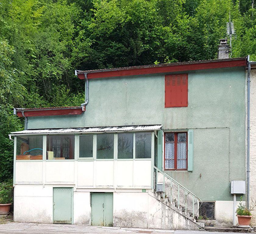 Maison à vendre 1 40.54m2 à Doulaincourt-Saucourt vignette-1