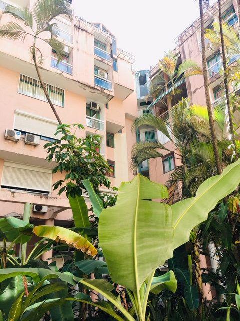 Appartement à louer 3 86.1m2 à Pointe-à-Pitre vignette-1