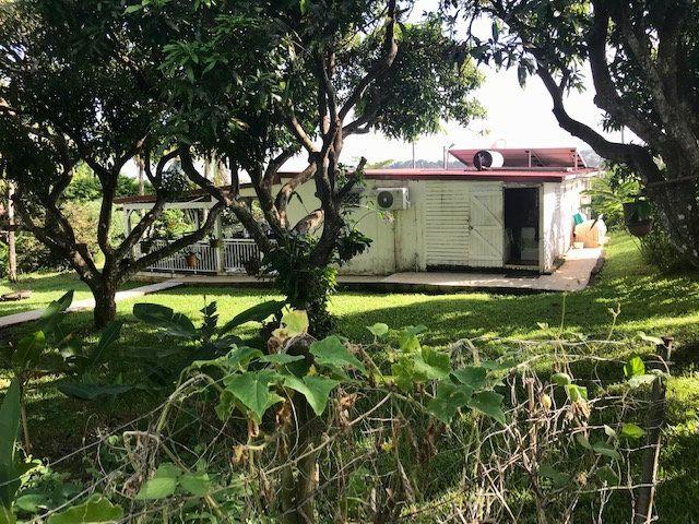 Maison à vendre 3 57m2 à Petit-Bourg vignette-12