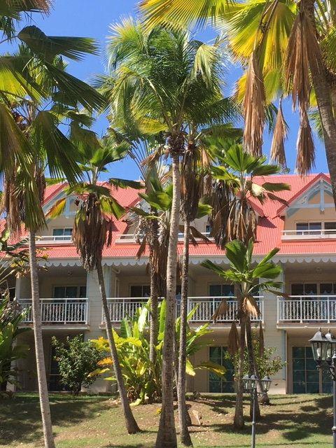Appartement à vendre 1 22.43m2 à Sainte-Anne vignette-2