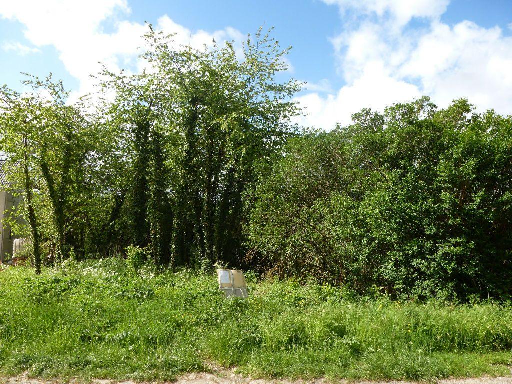 Terrain à vendre 0 1123m2 à Boissy-le-Châtel vignette-2