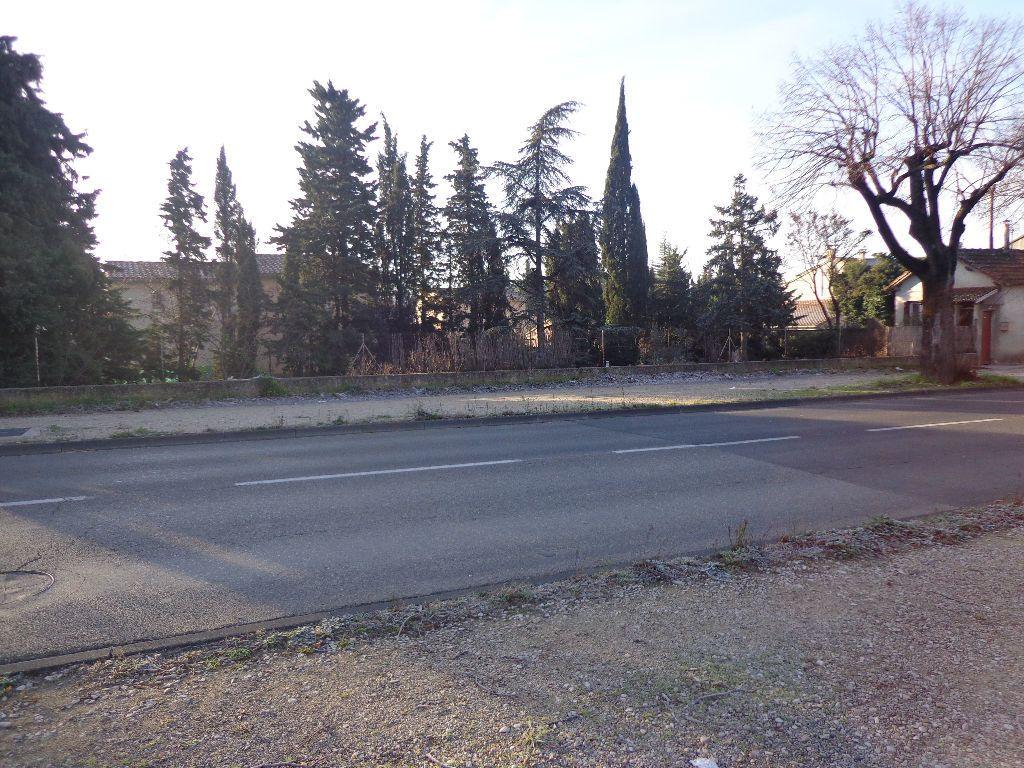 Maison à vendre 3 72m2 à Carpentras vignette-7