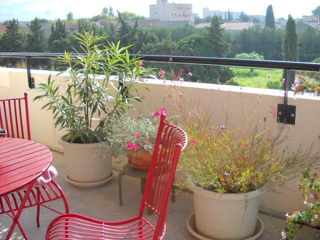 Appartement à vendre 3 63m2 à Carpentras vignette-2