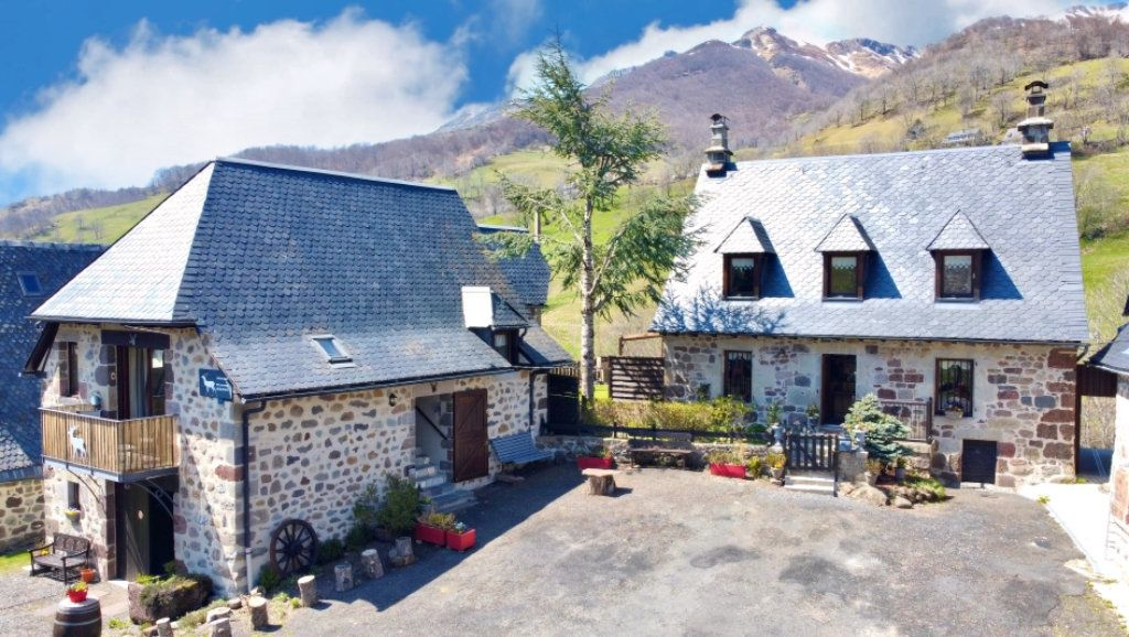 Maison à vendre 6 168m2 à Mandailles-Saint-Julien vignette-1