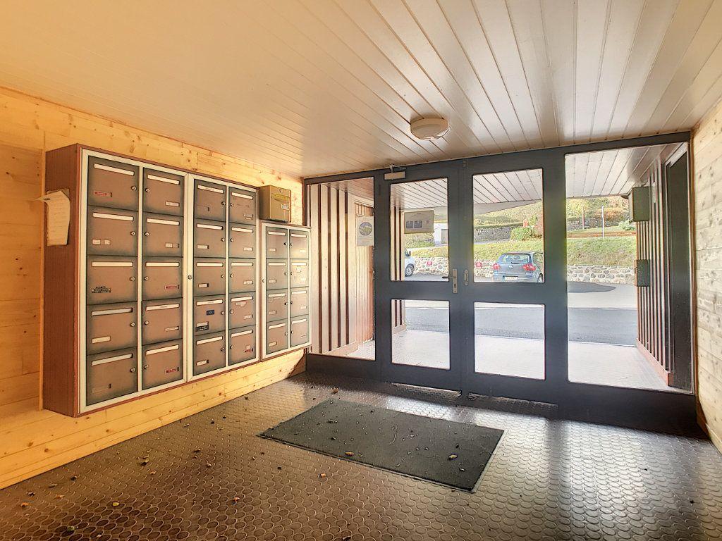 Appartement à vendre 1 22.5m2 à Laveissière vignette-9