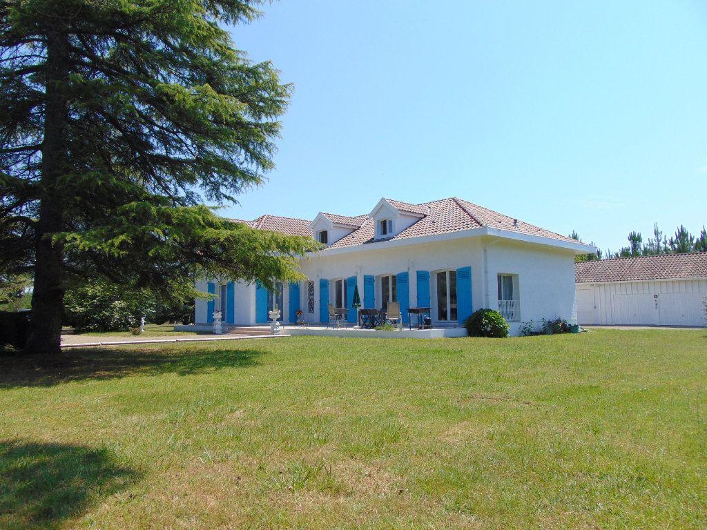 Maison à vendre 9 230m2 à Rion-des-Landes vignette-9