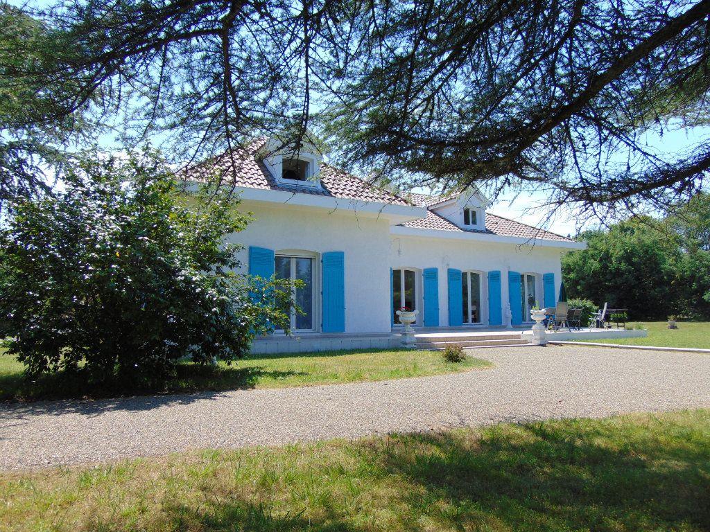 Maison à vendre 9 230m2 à Rion-des-Landes vignette-10