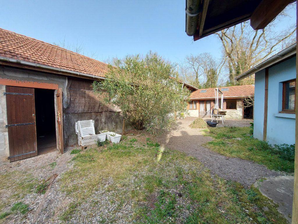 Maison à vendre 18 561m2 à Rion-des-Landes vignette-4