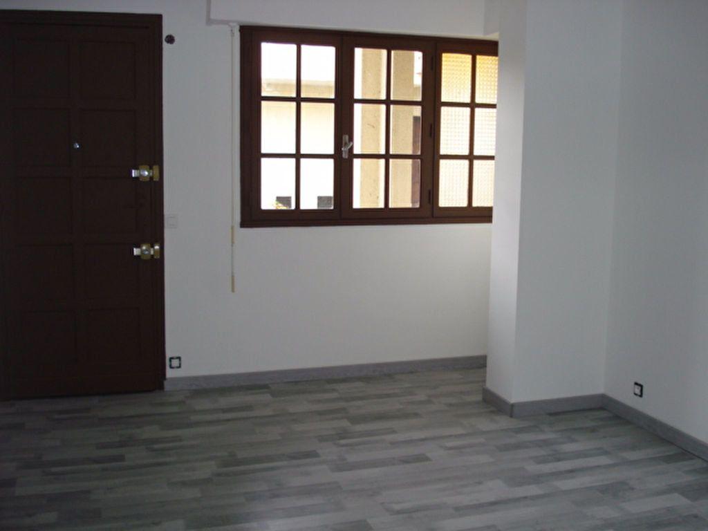 Appartement à louer 1 21.34m2 à Cagnes-sur-Mer vignette-2