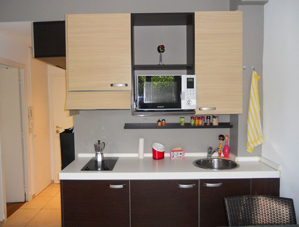 Appartement à vendre 1 19.48m2 à Saint-Laurent-du-Var vignette-6