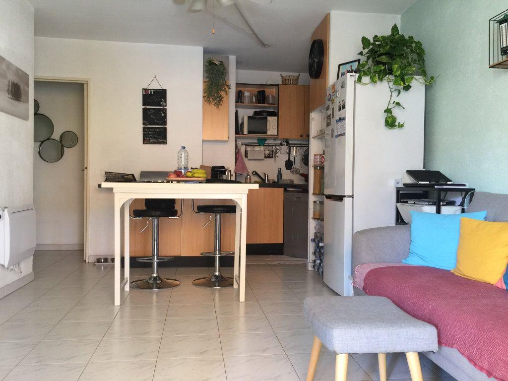 Appartement à louer 2 35.6m2 à Cagnes-sur-Mer vignette-6