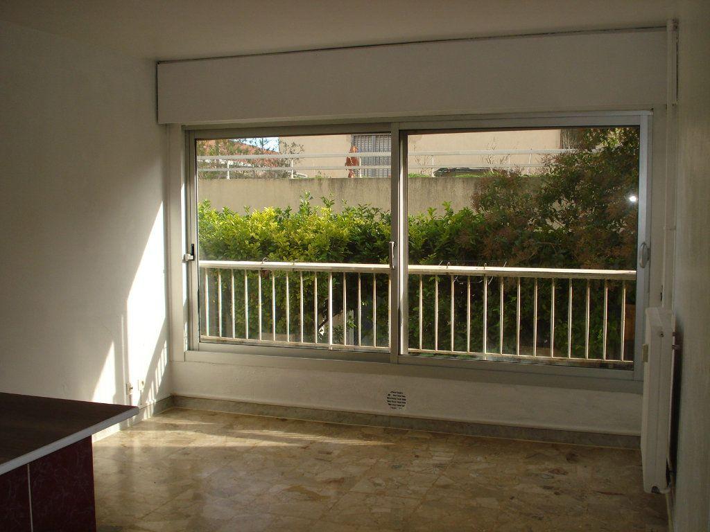 Appartement à louer 1 37.18m2 à Cagnes-sur-Mer vignette-2