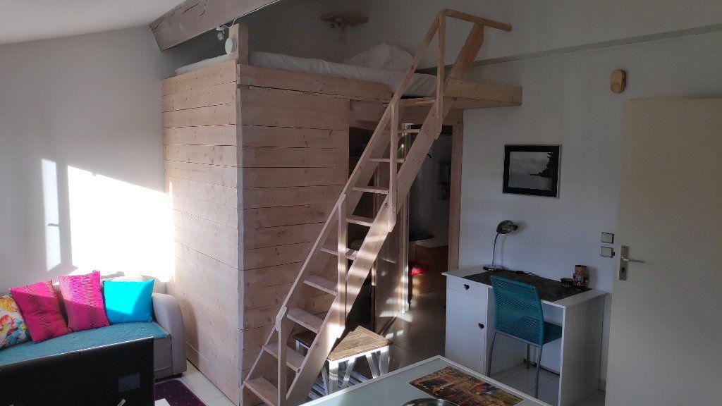 Appartement à louer 1 27m2 à Vallauris vignette-3