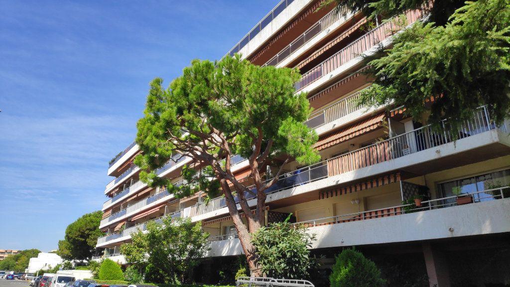 Appartement à louer 2 33m2 à Saint-Laurent-du-Var vignette-7