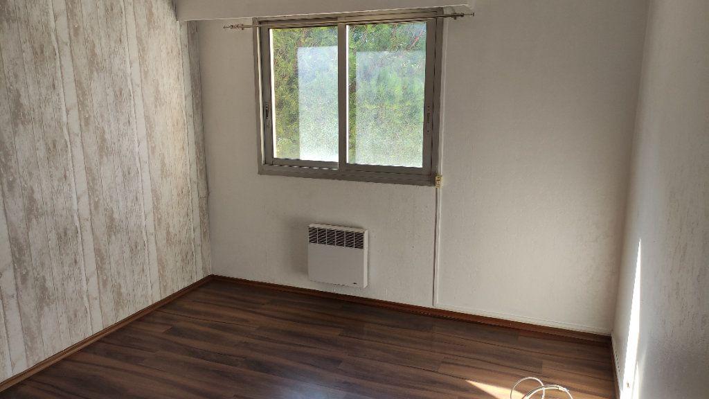 Appartement à louer 3 64m2 à Cagnes-sur-Mer vignette-6