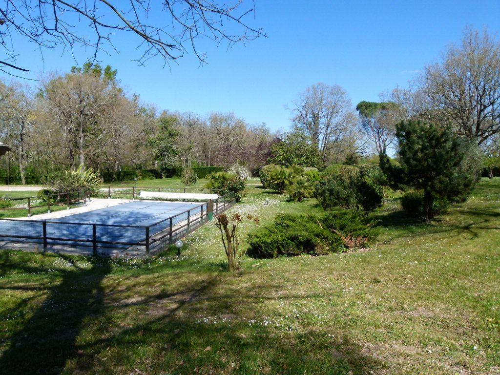 Maison à vendre 8 265m2 à Aucamville vignette-9