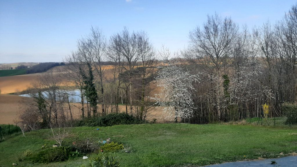 Maison à vendre 4 118m2 à Monclar-de-Quercy vignette-8