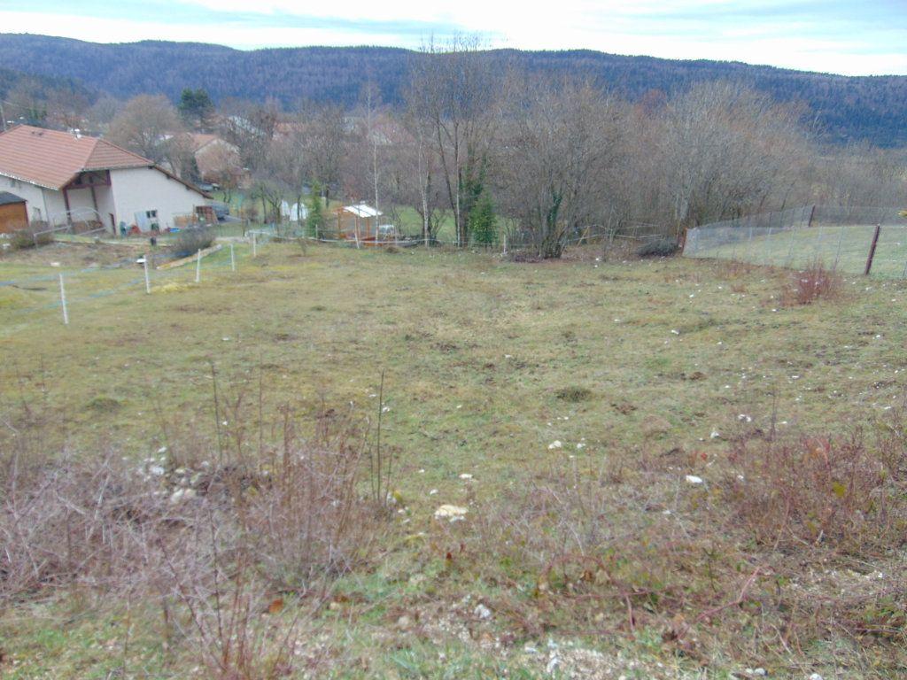 Terrain à vendre 0 816m2 à Cormaranche-en-Bugey vignette-1