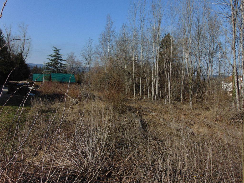 Terrain à vendre 0 2707m2 à Hauteville-Lompnes vignette-1