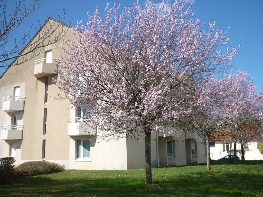 Appartement à louer 1 18m2 à Dijon vignette-1