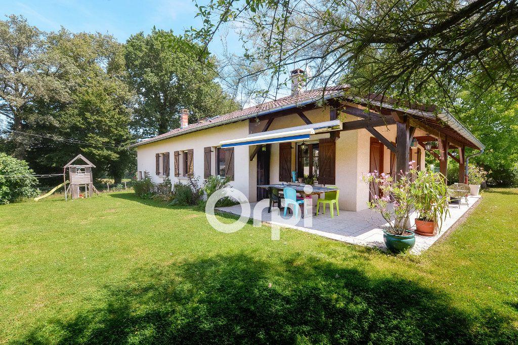 Maison à vendre 4 114m2 à Bény vignette-1
