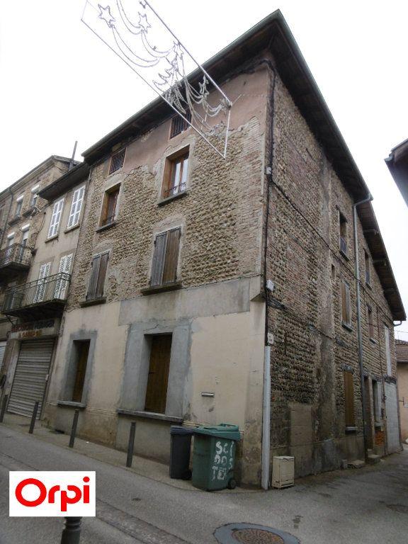 Immeuble à vendre 0 248m2 à Viriville vignette-6