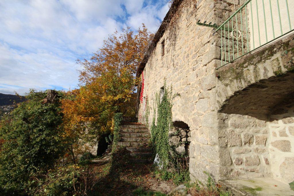 Maison à vendre 12 170m2 à Sainte-Marguerite-Lafigère vignette-2