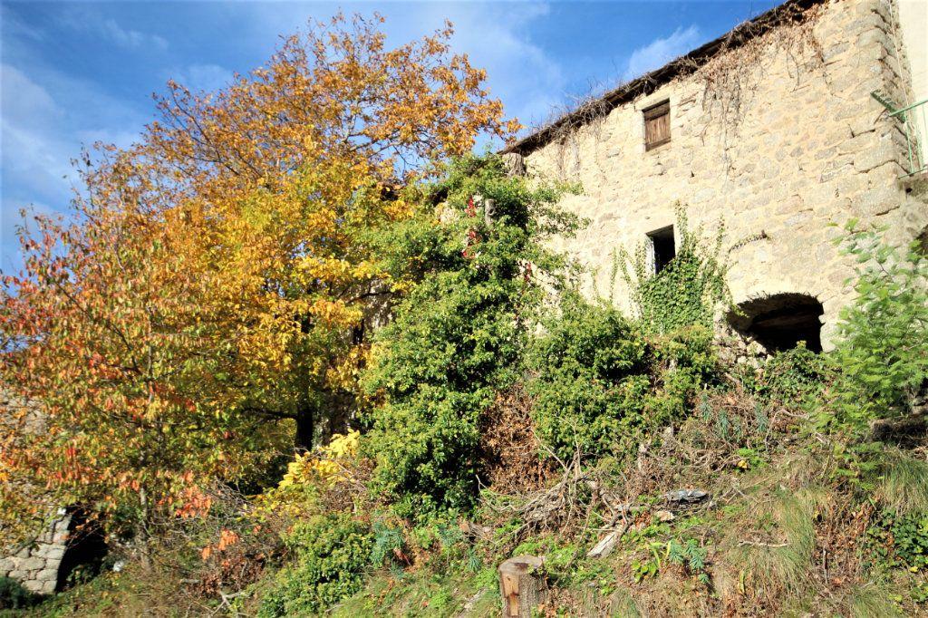 Maison à vendre 12 170m2 à Sainte-Marguerite-Lafigère vignette-4