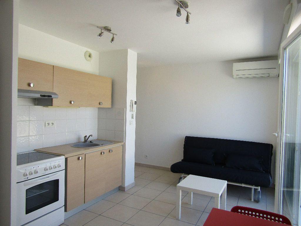 Appartement à louer 1 24m2 à Mauguio vignette-4