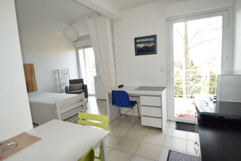 Appartement à louer 1 30m2 à Pau vignette-3