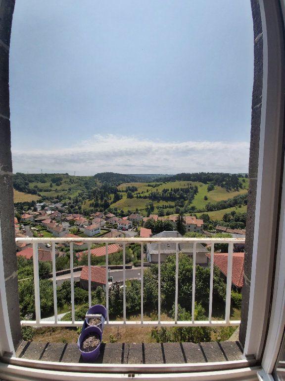 Appartement à louer 1 45m2 à Saint-Flour vignette-5