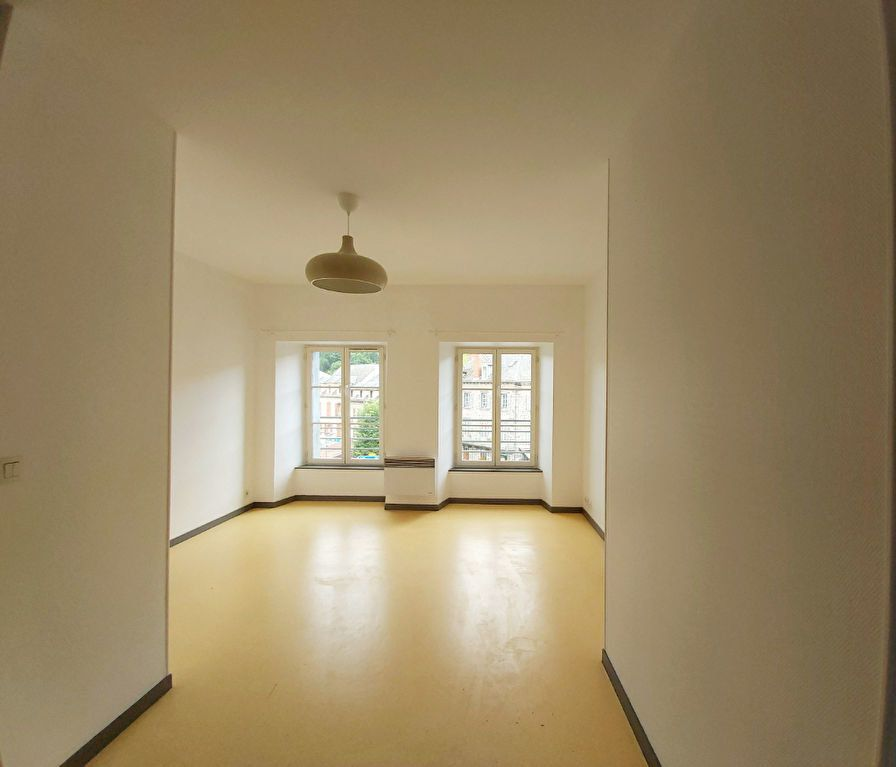 Appartement à louer 2 50m2 à Saint-Flour vignette-2