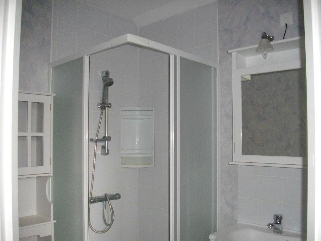 Appartement à louer 1 30.5m2 à Bourges vignette-4