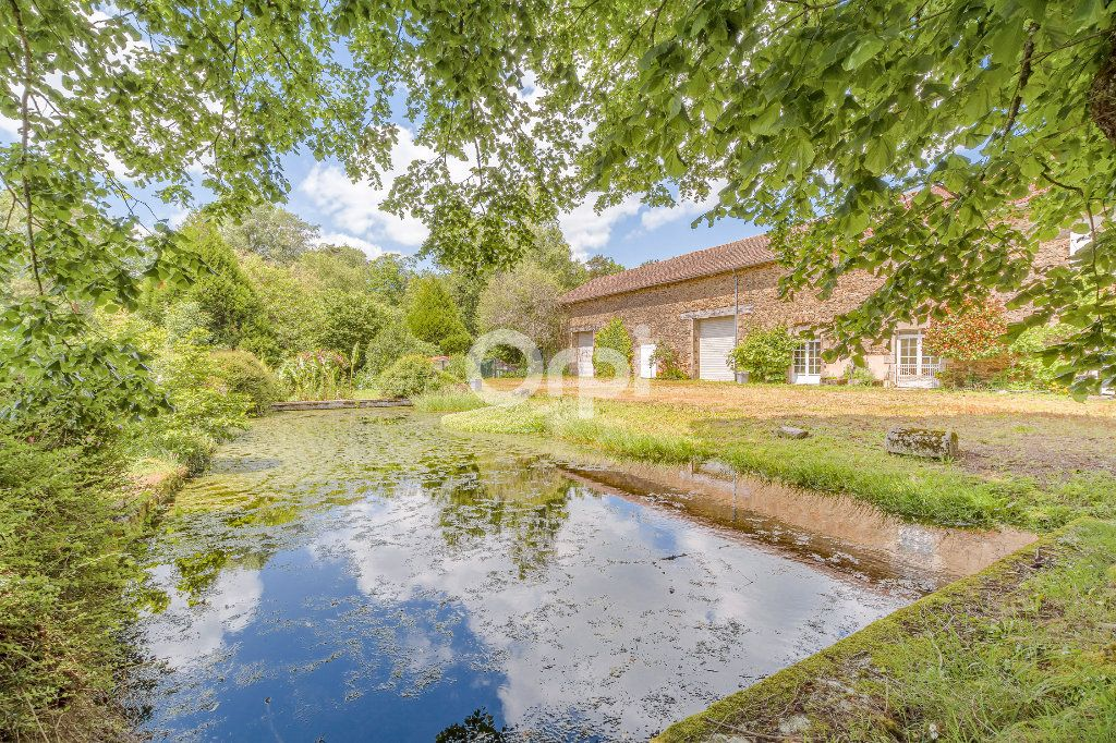 Maison à vendre 6 276m2 à Saint-Martin-Terressus vignette-4