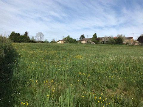 Terrain à vendre 0 1635m2 à Saint-Priest-Taurion vignette-2