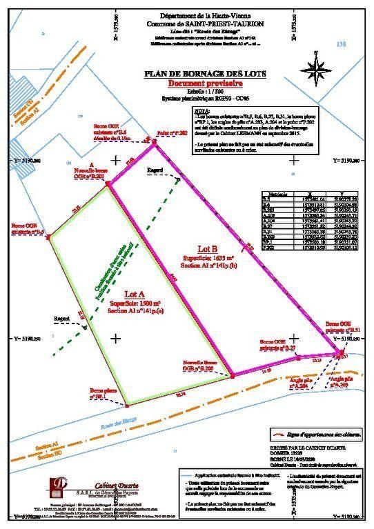 Terrain à vendre 0 1635m2 à Saint-Priest-Taurion vignette-4