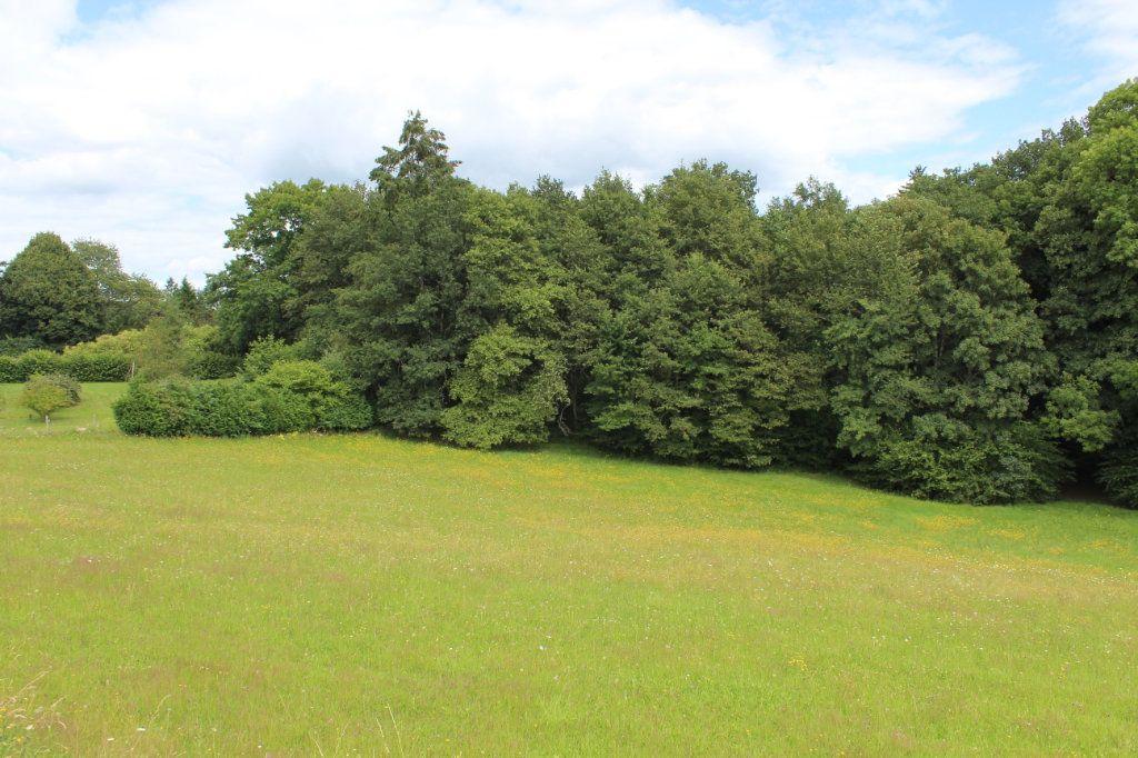 Terrain à vendre 0 7333m2 à Saint-Priest-Taurion vignette-2