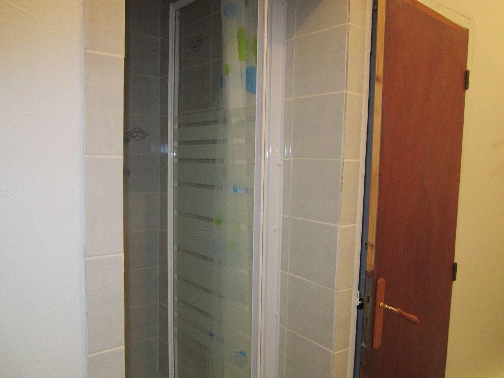 Appartement à louer 2 43m2 à Château-Arnoux-Saint-Auban vignette-5