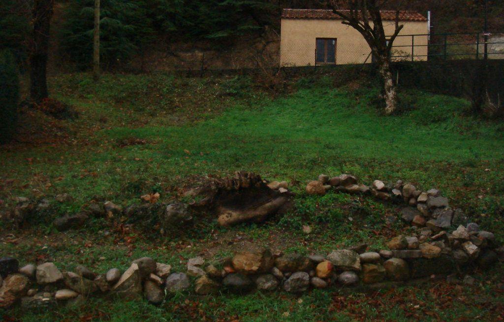 Appartement à louer 3 0m2 à Château-Arnoux-Saint-Auban vignette-6