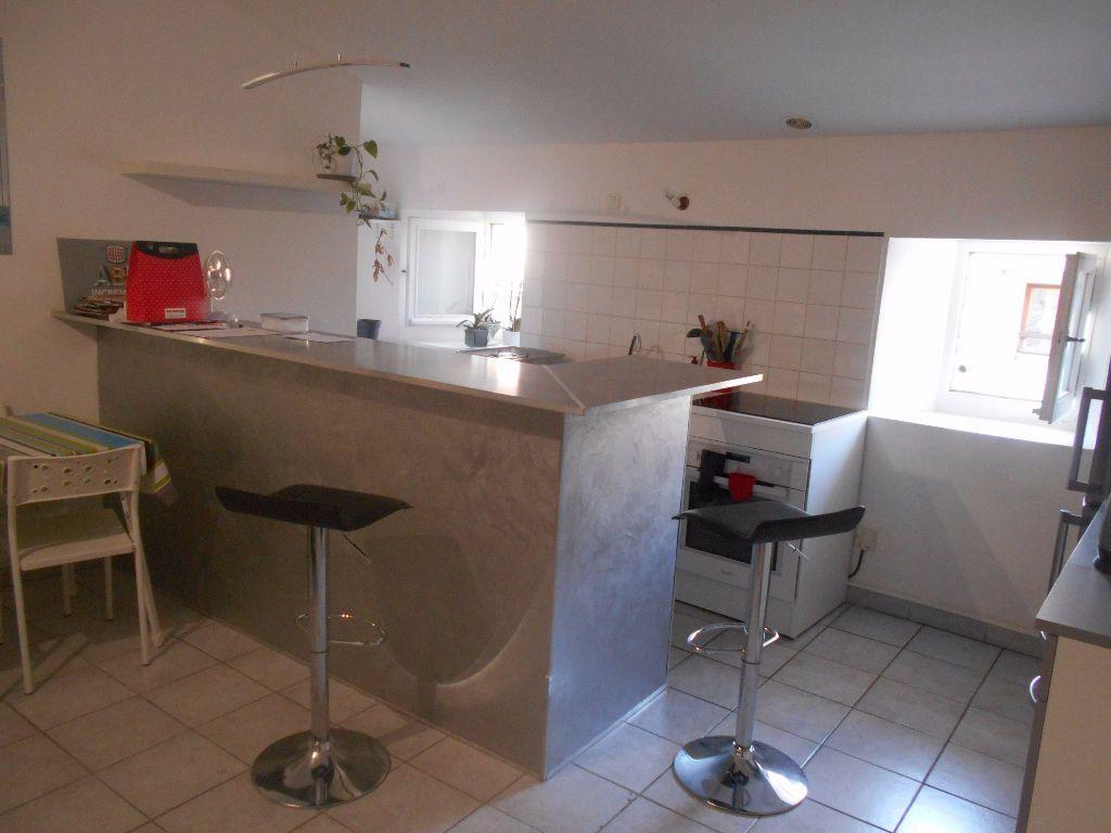 Appartement à louer 3 56.14m2 à Saint-Julien-de-Peyrolas vignette-3