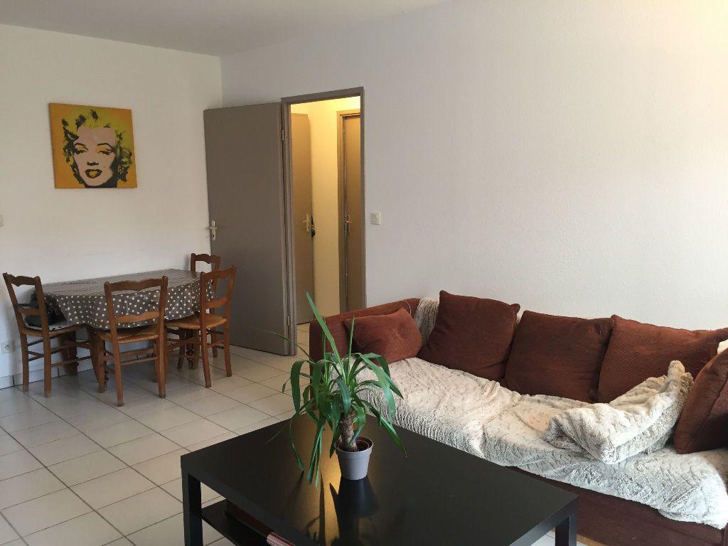 Appartement à louer 3 64m2 à Montrabé vignette-2