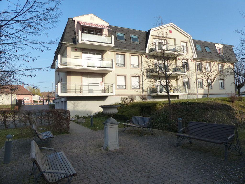 Appartement à louer 3 50.82m2 à Wittenheim vignette-1