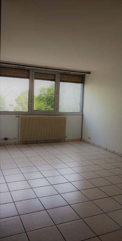 Appartement à louer 2 47m2 à Olivet vignette-6