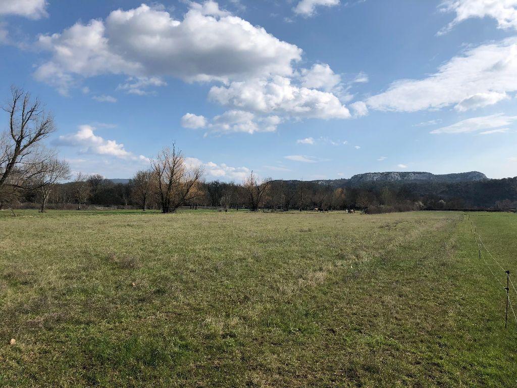Terrain à vendre 0 2898m2 à Vallon-Pont-d'Arc vignette-2