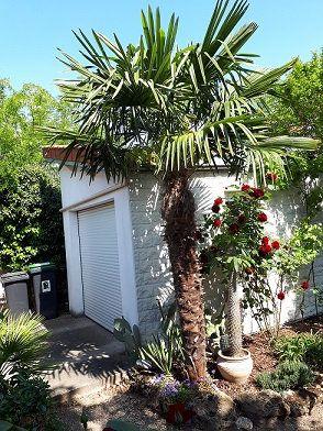 Maison à vendre 7 154m2 à Saint-Maur-des-Fossés vignette-3